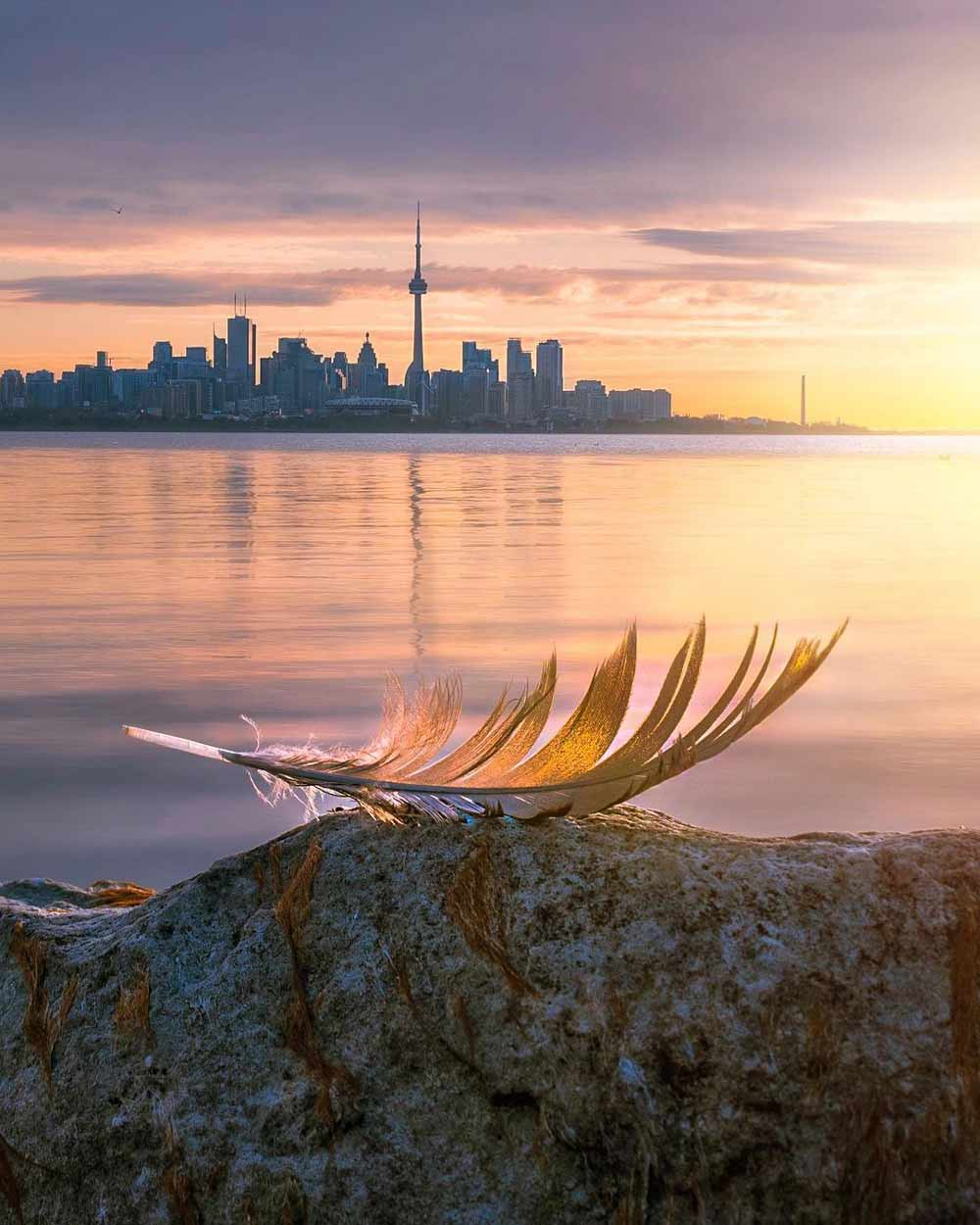 Toronto sunrise with feather - Photo by @magpie_n_moo Michele Thompson